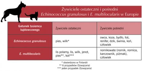 Żywiciele ostateczni ipośredni Echinococcus granulosus iE. multilocularis wEuropie
